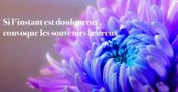 souvenirs_heureux