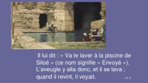 Piscine-de-Siloe