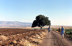 routegalilee